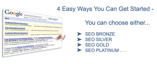 Professional SEO Solutions pic